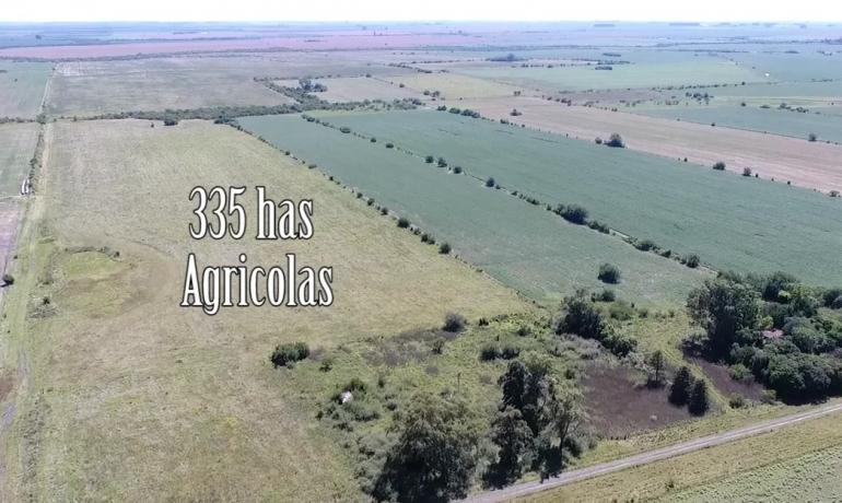 335 has  Agricolas Las Moscas   Entre Rios